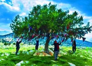 Türk İnanç Sistemi Üzerine Araştırma ve İncelemeler