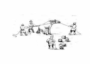 Kırgız Konar Göçerlerinde Kasaplık Geleneği: At Kesme Âdeti