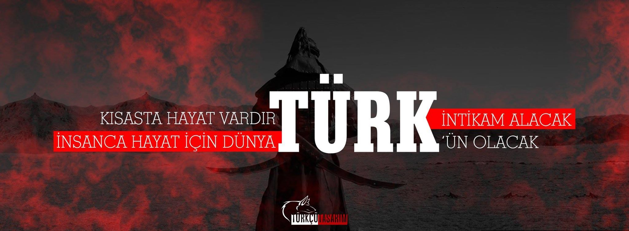 türk intikam olacak -kapak